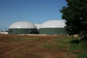 Biomassa centrale